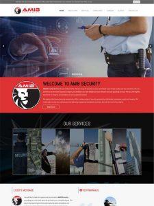 amib security uae